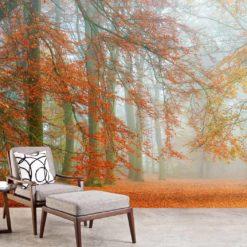 MU1352 - Autumn is Here