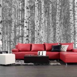 MU1131 - Birch Tree Forest
